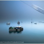 Tide Up in the Mist