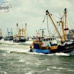 Trawler Race V