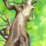 Tree Cycle 1