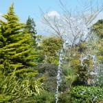Victoria Gardens by Aaron