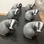 A bevvy of badgers!