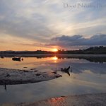 PERFECT SUNSET ON THE TEIGN ESTUARY