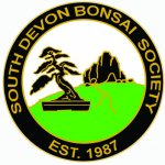 South Devon Bonsai Society / Bonsai Group