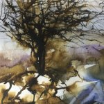 Breda Holden / Breda Holden   Watercolour and Mixed Media Painter