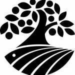 Torbay Coast & Countryside Trust / local conservation charity