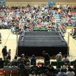 Pro Wrestling Pride / Pro Wrestling Pride