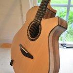 12 String Sultan Guitar