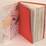 Airmail book