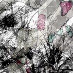 Forest by Emily Finn 2011