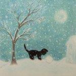 Kitten and Snowball